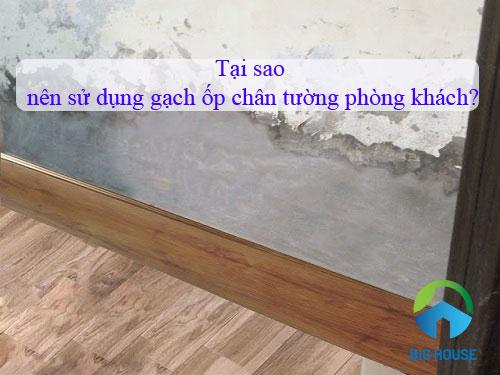 Có nên sử dụng các mẫu gạch ốp chân tường phòng khách? Cách chọn chuẩn xác