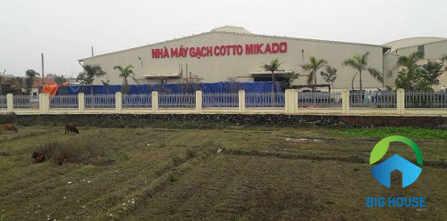 Công ty gạch ốp lát Mikado